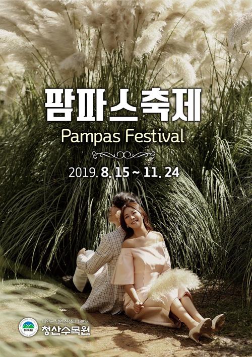 2019 팜파스 축제(Pampas Festival)